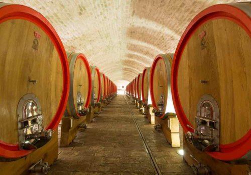 Vinski-podrum-Vina-Belje